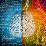 Illustration d'un cerveau avec différentes couleurs qui en émergent.